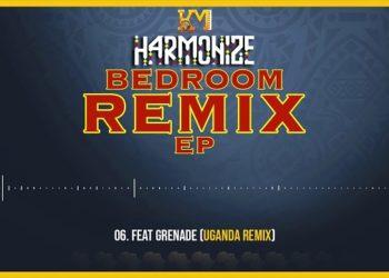 Harmonize Bedroom (remix) Ep