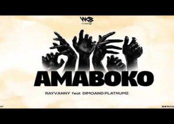 Rayvanny Amaboko