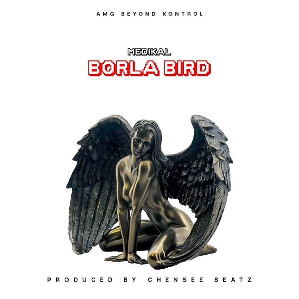 Medikal Borla Bird