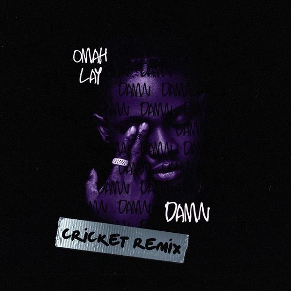 Omah Lay Damn (Cricket Remix)