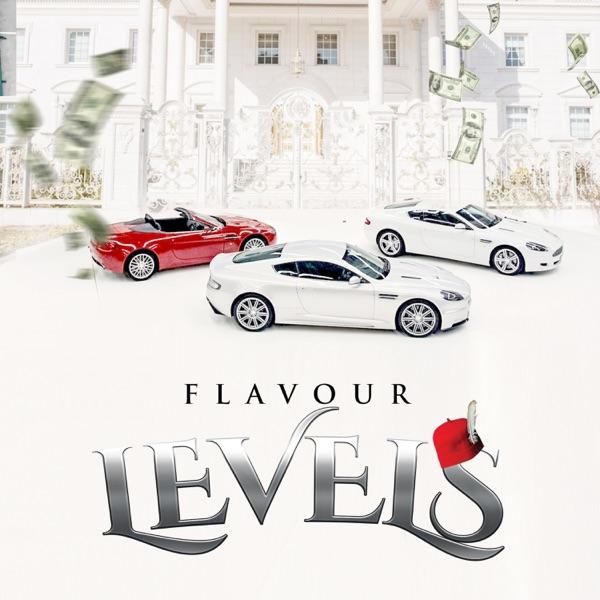Flavour Levels